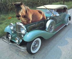 true-horsepower